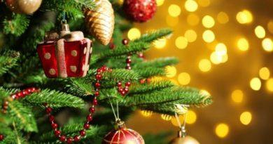 Зелёный символ Рождества