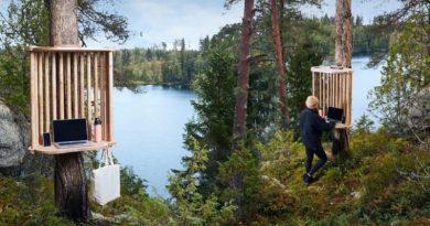 В Финляндии начали строить рабочие станции для удаленной работы на деревьях